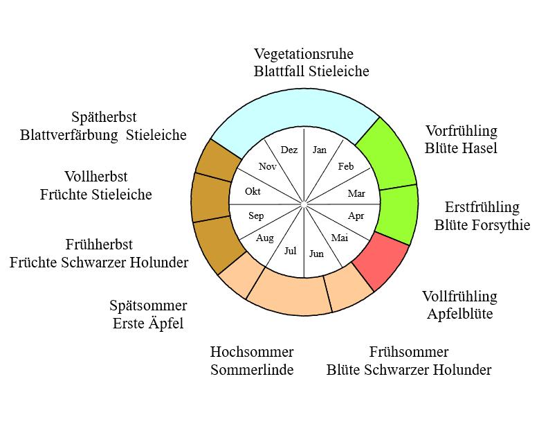 Phänologischer Kalender Rheinland Pfalz